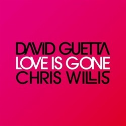 David Guetta Love Is Gonne...