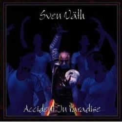 Sven Vath Accident in...